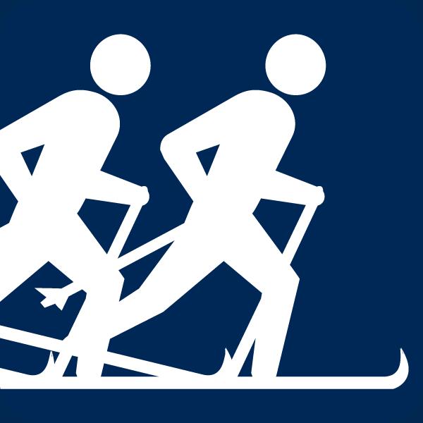 Aktivität: Skiing